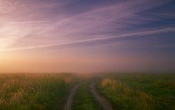 Nebelige Morgenwiese Sommerlandschaft mit grünem Gras, Straße und Wolken Lizenzfreies Stockfoto