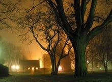 Nebelige Nacht im Park. Stockbild