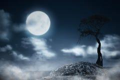 Nebelige Nacht mit Baum und Mondschein lizenzfreies stockbild