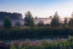 Nebelige Naturlandschaft Stockbild