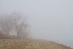 Nebelige See-Küstenlinie-Ansicht Lizenzfreies Stockbild