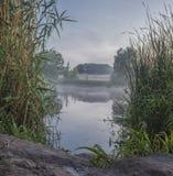 Nebelige Sommerlandschaft mit kleinem Waldfluß lizenzfreie stockbilder