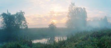 Nebelige Sommerlandschaft mit Waldfluß lizenzfreie stockfotos