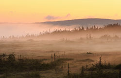 Nebelige Sonnenaufganglandschaft Stockfotos