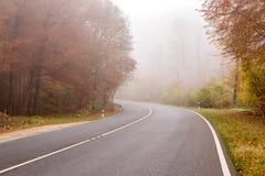 Nebelige Straße mit verringerter Sicht stockfotos