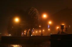 Nebelige Winternacht Stockfotos