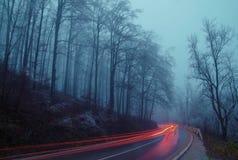 Nebelige Winternacht der Gebirgsstraße Stockfotografie