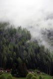 Nebelige Wolken, die vom alpinen Gebirgswald steigen Stockfoto
