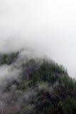 Nebelige Wolken, die vom alpinen Gebirgswald steigen Stockfotos