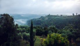 Nebeliger Abhang in Toskana Italien Lizenzfreie Stockfotos