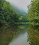 Nebeliger Fluss Stockfotografie