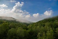 Nebeliger Fluss-Morgen Stockbild