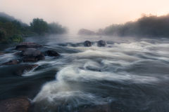 Nebeliger Fluss-Morgen Stockfotografie