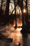 Nebeliger Fluss-Sonnenaufgang stockfotografie