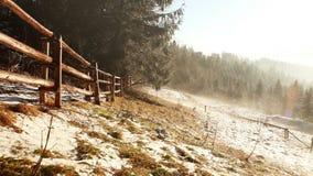 Nebeliger Frühlingsmorgen. Nebel fließt zwischen Tannen. Tatra-Berge stock footage