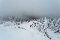 Nebeliger Gebirgskopflastiger Schnee am kalten Wintertag lizenzfreie stockbilder