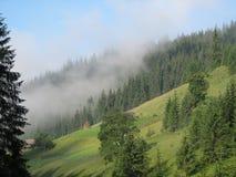 Nebeliger Hügel lizenzfreies stockbild