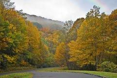 Nebeliger Herbst-Tag Lizenzfreies Stockbild