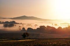 Nebeliger Herbstmorgen im böhmischen Paradies, Tschechische Republik Stockbilder