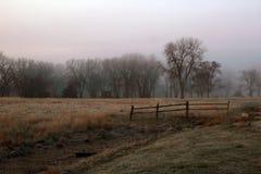 Nebeliger Landmorgen ?ber einem Feld lizenzfreie stockfotos