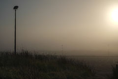Nebeliger Morgen Lizenzfreies Stockbild