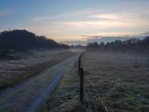 Nebeliger Morgen auf den Gebieten Lizenzfreie Stockfotografie
