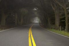 Nebeliger Morgen auf der Straße Lizenzfreie Stockfotografie