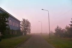 Nebeliger Morgen auf der Straße Stockfotografie