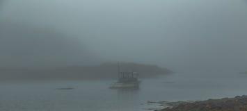 Nebeliger Morgen auf Schoodic Stockfoto