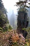 Nebeliger Morgen in den Bergen Stockbilder