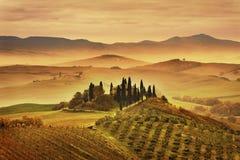 Nebeliger Morgen Toskana, Ackerland und Zypressenbäume Italien Stockbild