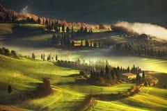 Nebeliger Morgen Toskana, Ackerland und Zypressenbäume Italien Stockfotos