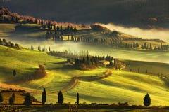 Nebeliger Morgen Toskana, Ackerland und Zypressenbäume Italien Lizenzfreies Stockbild