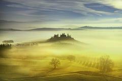 Nebeliger Morgen Toskana, Ackerland und Zypressenbäume Italien Lizenzfreie Stockfotos