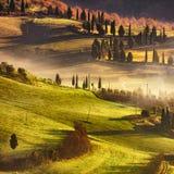 Nebeliger Morgen Toskana, Ackerland und Zypressenbäume Italien Stockfoto