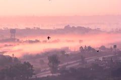 Nebeliger mystischer Morgen Stockbild