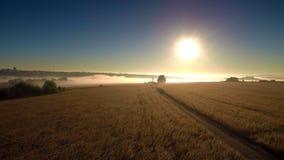 Nebeliger Sonnenaufgang über dem Feld stock video