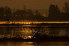 Nebeliger Sonnenaufgang im Sumpfgebiet über den Sümpfen lizenzfreie stockfotos