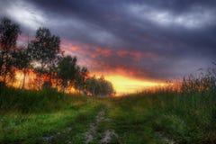 Nebeliger Sonnenuntergang Stockbilder