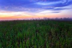 Nebeliger Sonnenuntergang auf dem Sommergebiet Lizenzfreies Stockfoto