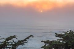 Nebeliger Sonnenuntergang des Pazifischen Ozeans mit Zypresse-Bäumen Lizenzfreie Stockfotografie