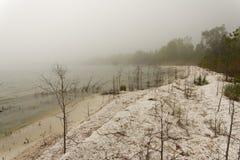 Nebeliger Tag auf der See Michiganseeküstenlinie, die es zeigt, bedeckte mit Zebramuscheloberteilen stockfoto