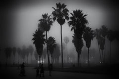 Nebeliger Tag auf Venedig-Strand Stockbild