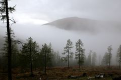 Nebeliger Tag in den österreichischen Alpen Stockfotografie