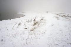 Nebeliger Winterweg Stockbilder