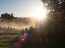 Nebeliges Feld bei Sonnenaufgang mit Blendenfleck Lizenzfreies Stockbild