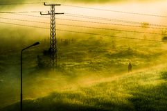 Nebeliges Feld stockbild