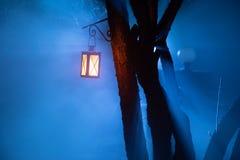 Nebeliges Nachtyard mit hellem Licht auf Hintergrund Laterne, die am Baum hängt lizenzfreie stockfotografie