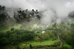 Nebeliges Paradies Stockfoto