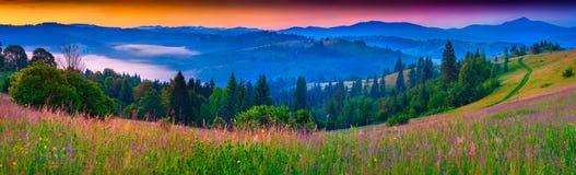 Nebeliges Sommerpanorama der Karpatenberge Lizenzfreies Stockbild